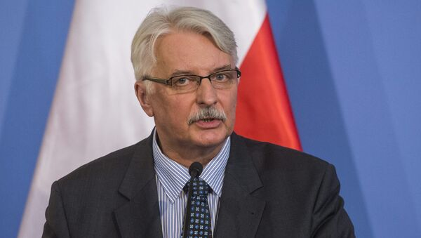 Polish Foreign Minister Witold Waszczykowski speaks during a joint press conference. - Sputnik International