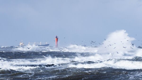 Baltic Sea - Sputnik International