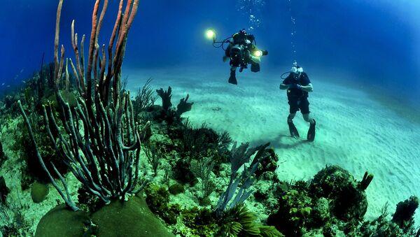 Ocean floor - Sputnik International