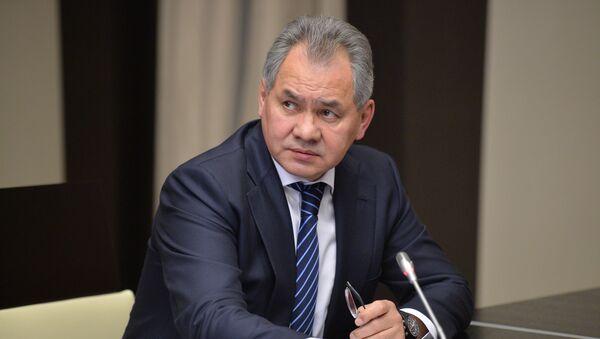 Russian Defense Minister Sergei Shoigu - Sputnik International