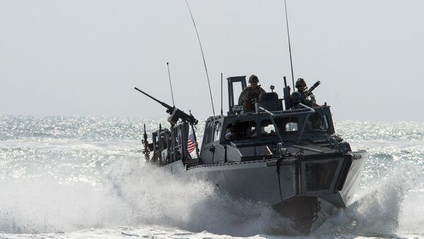 Riverine Command Boat (RCB) 805 in the Persian Gulf. (File) - Sputnik International