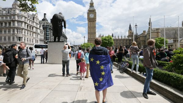 A demonstrator wrapped in the EU flag takes part in a protest opposing Britain's exit from the European Union in Parliament Square following yesterday's EU referendum result, London, Saturday, June 25, 2016 - Sputnik International