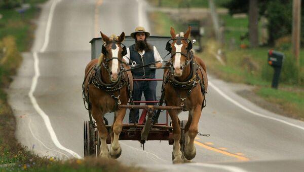 An Amish man drives his team of work horses down a road in Burton Township, Ohio - Sputnik International
