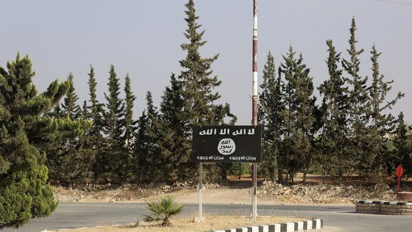 An Islamic State (IS) group flag is seen on a road in the jihadist's group bastion of Manbij, in northern Syria (File) - Sputnik International