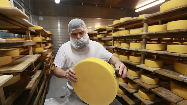 Cheese blocks are washed and put into the cheese maturation storage at the Russky Parmezan cheese factory in the Istra Region of the Moscow Region - Sputnik International