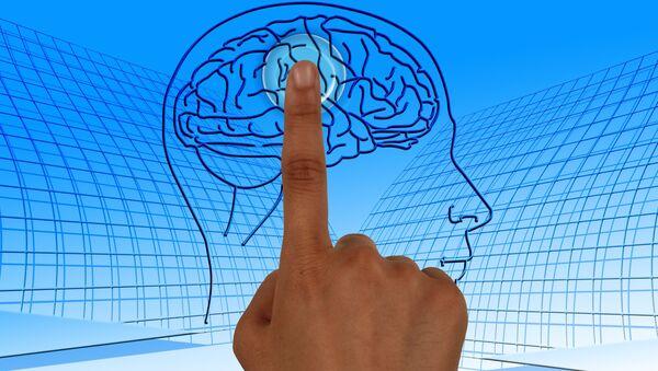 Brain Study - Sputnik International