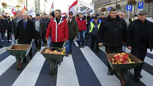 Hundreds of Polish farmers and horticulturists staged a march in Warsaw in protest against Russia's ban on the import of their fruit and vegetables. File photo - Sputnik International