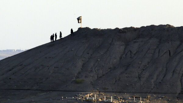 In this file photo Daesh terrorists are seen after placing their group's flag on a hilltop at the eastern side of the town of Kobani, Syria - Sputnik International