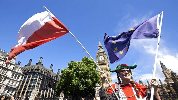 A woman holds up a Polish and European flags in Parliament Square as thousands of protesters take part in a March for Europe, through the centre of London on July 2, 2016, to protest against Britain's vote to leave the EU. - Sputnik International