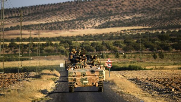Turkish soldiers stand in a Turkish army tank driving back to Turkey from the Syrian-Turkish border town of Jarabulus on September in the Turkish-Syrian border town of Karkamis. (File) - Sputnik International
