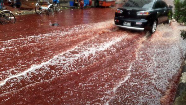 Bangladesh Blood River - Sputnik International