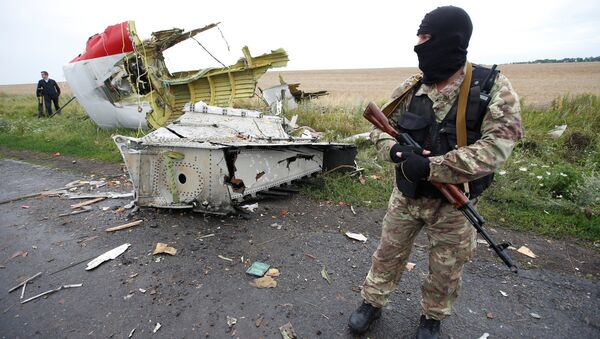 A member of self-defense unit stands at the crash site of Malaysia Airlines flight MH17, near the village of Hrabove (Grabovo) in Donetsk region, Ukraine. (File) - Sputnik International