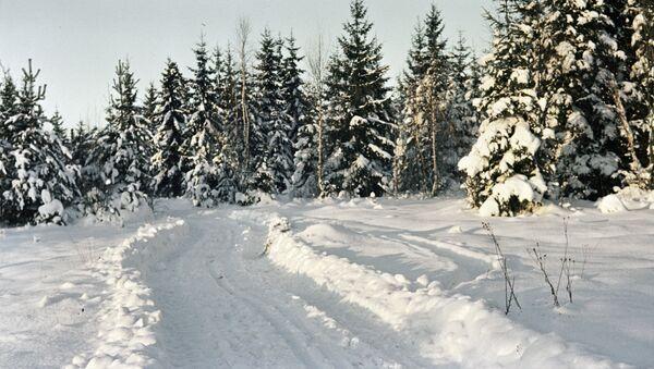 Wintertime - Sputnik International