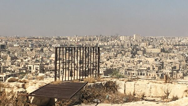 Terrorist-controlled eastern Aleppo districts as seen from the city's Citadel. (File) - Sputnik International