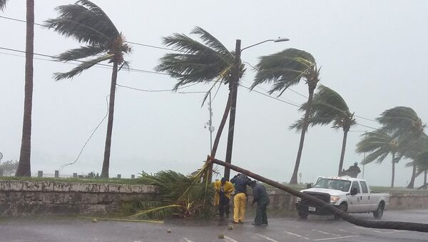 Maintainance workers try to remove a tree from a road in Nassau, New Providence island in the Bahamas, on October 6, 2016, after the passing of Hurricane Matthew - Sputnik International