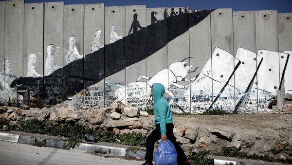 A Palestinian boy walks past graffiti painted on Israel's controversial separation barrier in the Aida refugee camp situated inside the West Bank town of Bethlehem, on February 12, 2016.  - Sputnik International