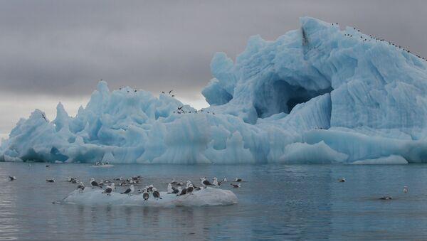 Iceberg near Hooker Island, Franz Josef Land, Russia - Sputnik International