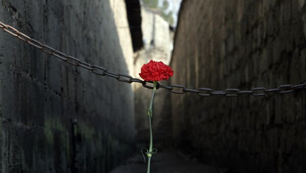 A red carnation sits at the entrance of the corridor where prisoners were once shot, prior to the commemoration ceremony on the occasion of the 60th anniversary of the liberation of the Nazi women's concentration camp of Ravensbrueck in Fuerstenberg, north of Berlin, eastern Germany. (File) - Sputnik International