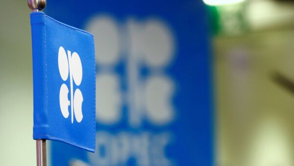 The OPEC flag and the OPEC logo are seen before a news conference in Vienna, Austria, October 24, 2016 - Sputnik International
