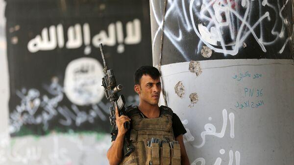 A member of Iraqi counterterrorism forces stands guard near Islamic State group militant graffiti in Fallujah, Iraq (File) - Sputnik International