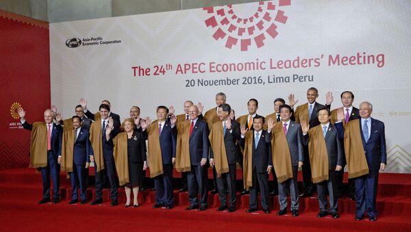 Leaders of Asia Pacific Economic Cooperation, APEC during the group photo in Lima, Peru - Sputnik International