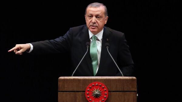 Turkish President Recep Tayyip Erdogan delivers a speech during the Living Human Treasures award ceremony at the Bestepe National Congress and Culture Centre in Ankara on November 3, 2016 - Sputnik International