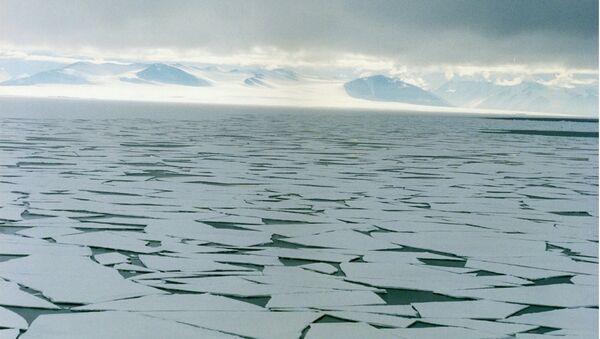 Sea ice in the Ross Sea, Antarctica - Sputnik International