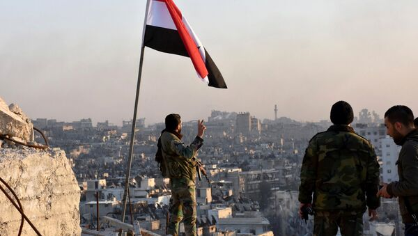 A Syrian government soldier gestures a v-sign under the Syrian national flag near a general view of eastern Aleppo after they took control of al-Sakhour neigbourhood in Aleppo, Syria in this handout picture provided by SANA on November 28, 2016 - Sputnik International