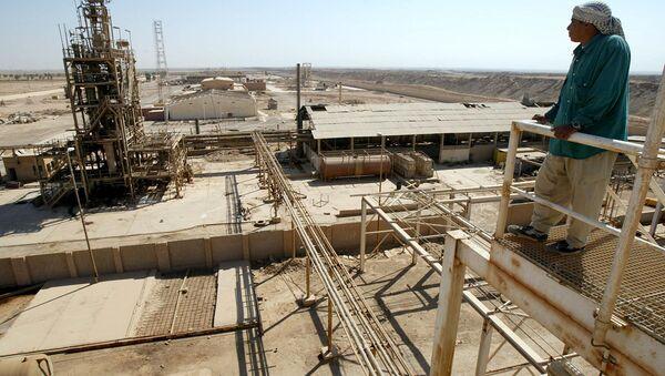 A worker stands on a platform overlooking the chlorine plant. Iraq (File) - Sputnik International