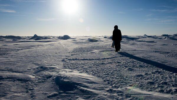Arctic. (File) - Sputnik International