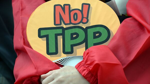 A demonstrator holds a fan with No! TPP in a protest against the Trans Pacific Partnership (TPP) trade deal at a sit-in demonstration in front of the parliament building in Tokyo - Sputnik International