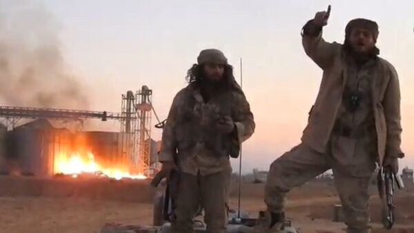 A still image taken from a video released by Islamic State-affiliated Amaq news agency, said to be in Palmyra, on December 11, 2016 - Sputnik International