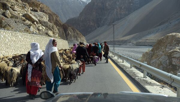 Local people control their sheep and goats at the Karakoram highway in Gulmit village of Hunza valley in northern Pakistan - Sputnik International