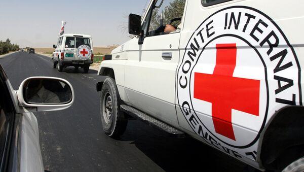 ICRC staff members - Sputnik International