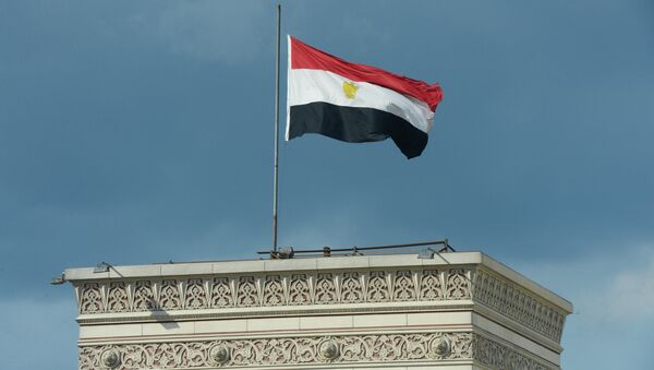 Egypti's national flag on a building in Cairo - Sputnik International