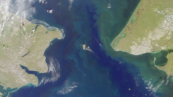 The Bering Strait, seen here in a satellite image, is the body of water that separates North America from Russia. - Sputnik International