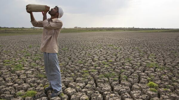 Shepard drinks water on the dry bed of Manjara Dam, which supplies water to Latur and nearby villages in Marathwada region, in the Indian state of Maharashtra. (File) - Sputnik International