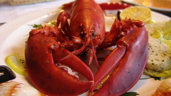 Lobster - Sputnik International