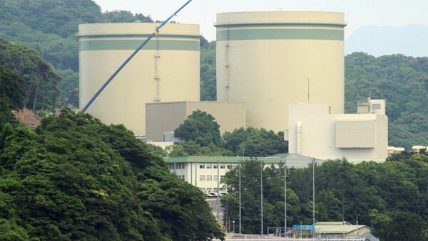 Kansai Electric's No. 1 and No. 2 reactors at the Takahama nuclear plant are seen in this picture at the town of Takahama in Fukui prefecture, some 350 kilometres (215 miles) west of Tokyo on June 20, 2016 - Sputnik International