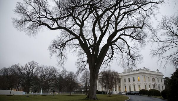 The White House on the morning of the first full day of President Donald Trump's administration, in Washington - Sputnik International