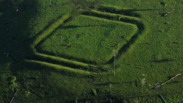 Geometric glyphs discovered in the Amazon. This one depicts a diamond. - Sputnik International