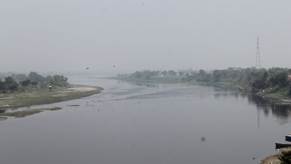 The River Yamuna - Sputnik International