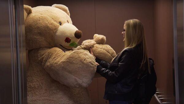 GIANT BEAR GIVES OUT VALENTINES - Sputnik International