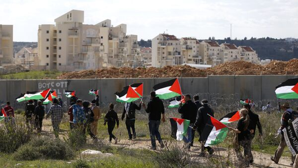 Palestinians and foreigners march towards Israel's controversial separation wall between the West Bank village of Bilin near Ramallah and the Israeli settlement of Modiin Ilit during a demonstration against settlements in the area, on February 17, 2017 - Sputnik International