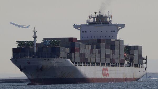 A container ship arrives at a port in Tokyo (File) - Sputnik International