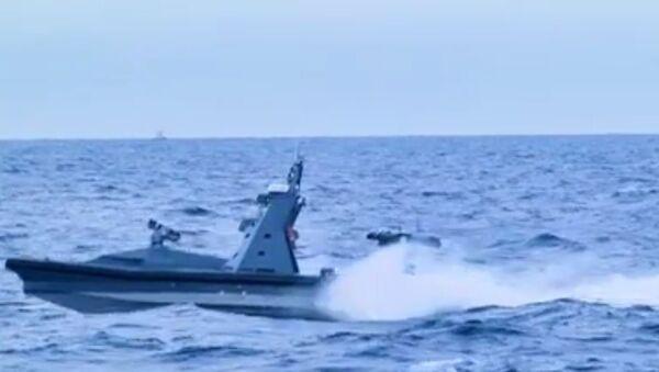 Protector at sea - Sputnik International