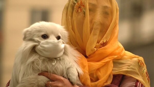 A woman with a voile over her head puts on a face mask to her little dog. China (File) - Sputnik International