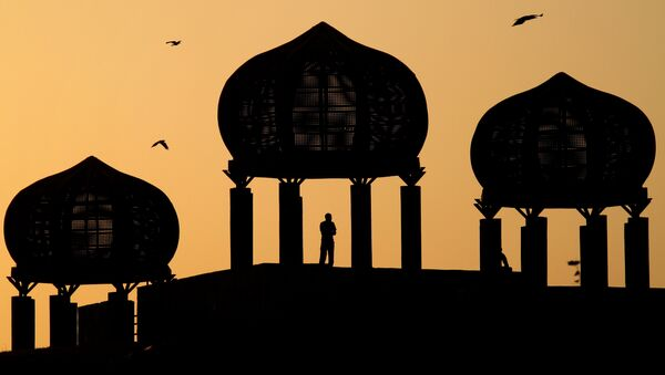 A Pakistani observes the view from a dome-shaped terrace at a park in Islamabad, Pakistan - Sputnik International