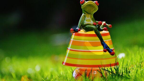 Frog - Sputnik International