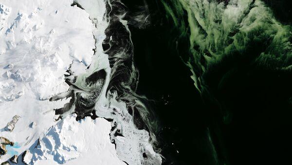 Antarctica's Granite Harbor, turned green by phytoplankton. The photos were taken by NASA's Operational Land Imager (OLI). - Sputnik International